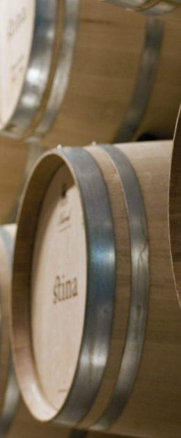 Split, 190512 Vinogradi i vinski podrum tvrtke Jako vino na Bracu. Bacve u podrumu. Foto: Jakov Prkic / Cropix - sd specijal -